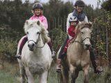 Familjen och ett par av våra hästar